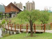 2012-07-25高雄 中都濕地公園:2012-07-25高雄 中都濕地公園 014.JPG