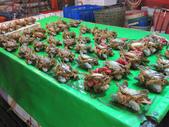 2013-11-02嘉義 布袋港 魚市:2013-11-02布袋港 魚市 023.JPG