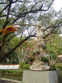 2013-02-07台南百花祭(台南公園):台南百花祭 053.JPG