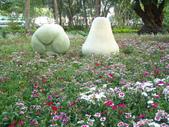 2013-02-07台南百花祭(台南公園):台南百花祭 029.JPG