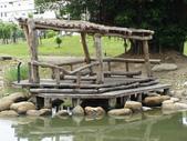 2012-07-25高雄 中都濕地公園:2012-07-25高雄 中都濕地公園 049.JPG