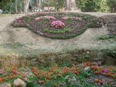 2013-02-07台南百花祭(台南公園):台南百花祭 042.JPG