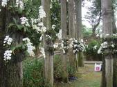 2012-04-07江南渡假村(尖山埤水庫):2012-04-07江南渡假村 008.JPG