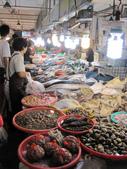 2013-11-02嘉義 布袋港 魚市:2013-11-02布袋港 魚市 022.JPG