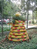 2013-02-07台南百花祭(台南公園):台南百花祭 008.JPG