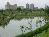 2012-07-25高雄 中都濕地公園:2012-07-25高雄 中都濕地公園 033.JPG