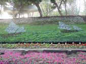 2013-02-07台南百花祭(台南公園):台南百花祭 054.JPG