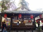 2012-03-05溪頭 松林町妖怪村:2012-03-05松林町妖怪村 017.JPG