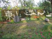 2013-02-07台南百花祭(台南公園):台南百花祭 009.JPG