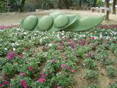 2013-02-07台南百花祭(台南公園):台南百花祭 031.JPG