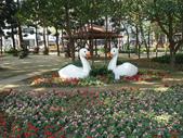 2012-02-29 2012台南百花祭:2012-02-29 2012台南百花祭 016.JPG