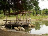 2012-07-25高雄 中都濕地公園:2012-07-25高雄 中都濕地公園 052.JPG