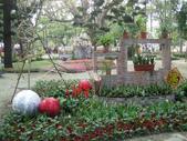 2013-02-07台南百花祭(台南公園):台南百花祭 010.JPG