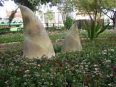 2013-02-07台南百花祭(台南公園):台南百花祭 032.JPG