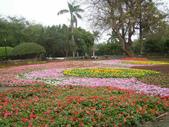 2013-02-07台南百花祭(台南公園):台南百花祭 073.JPG