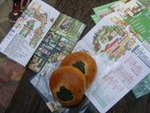 2012-03-05溪頭 松林町妖怪村:2012-03-05松林町妖怪村 018.JPG