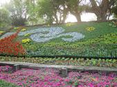 2013-02-07台南百花祭(台南公園):台南百花祭 056.JPG