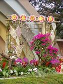 2013-02-07台南百花祭(台南公園):台南百花祭 085.JPG