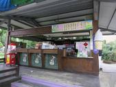 2013-02-05嘉義 獨角仙農場:獨角仙農場 017.JPG