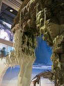 2013-02-10台南 新市 樹谷科學生活館:樹谷科學生活館 017.JPG