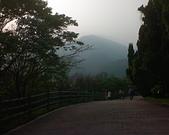 陽明山/花季/正:1787156470.jpg