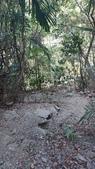 [台中市和平區] 唐麻丹山 裡冷部落線:DSC_1854.JPG