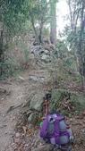 [台中市和平區] 唐麻丹山 裡冷部落線:DSC_1859.JPG