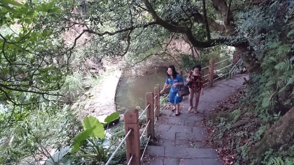 頂湖~水車寮步道~水尾山~二子坪親山步道:DSC_0255.JPG