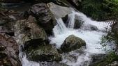 宜蘭縣冬山鄉新寮瀑布:DSC_0222.JPG