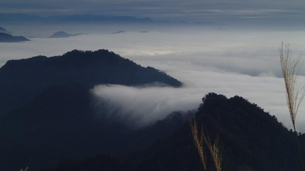 馬那邦山(錦雲山莊登山口):PC275737.JPG