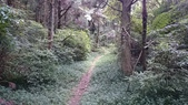 頂湖~水車寮步道~水尾山~二子坪親山步道:DSC_0171.JPG