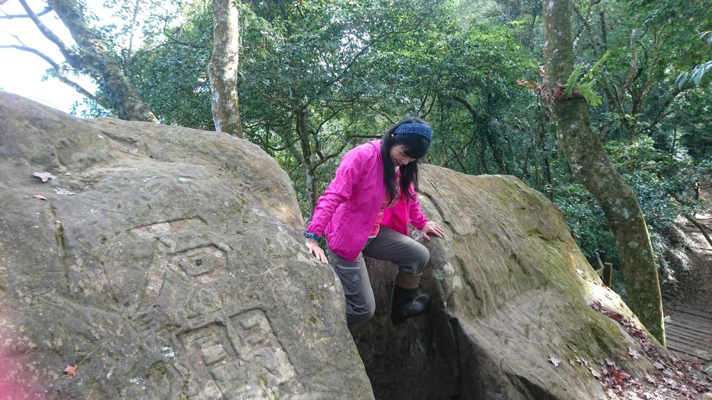 馬那邦山(錦雲山莊登山口):DSC_0538.JPG