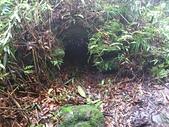 七星山的泥土步道100.11.29.~101.1.3.下午:DSC_0234.JPG