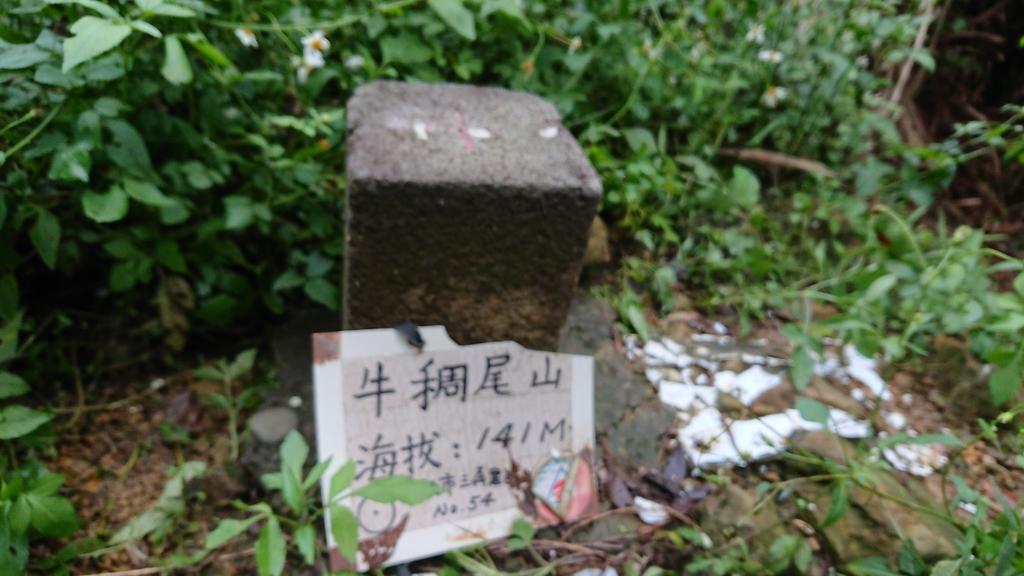 DSC_0476.JPG - 旅聯網十四周年版主登山活動