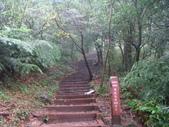 七星山的泥土步道100.11.29.~101.1.3.下午:DSC02026.JPG