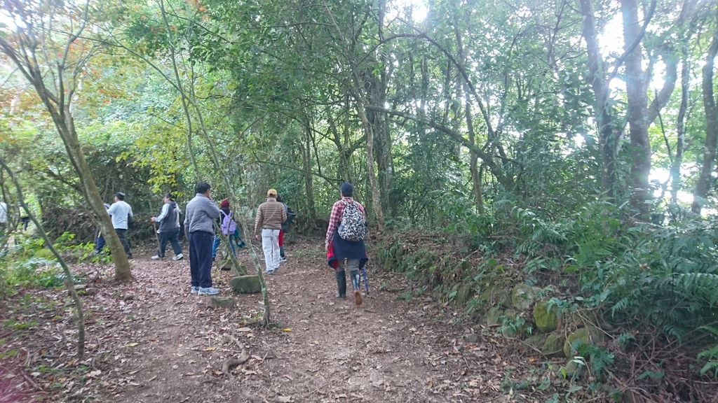 馬那邦山(錦雲山莊登山口):DSC_0510.JPG
