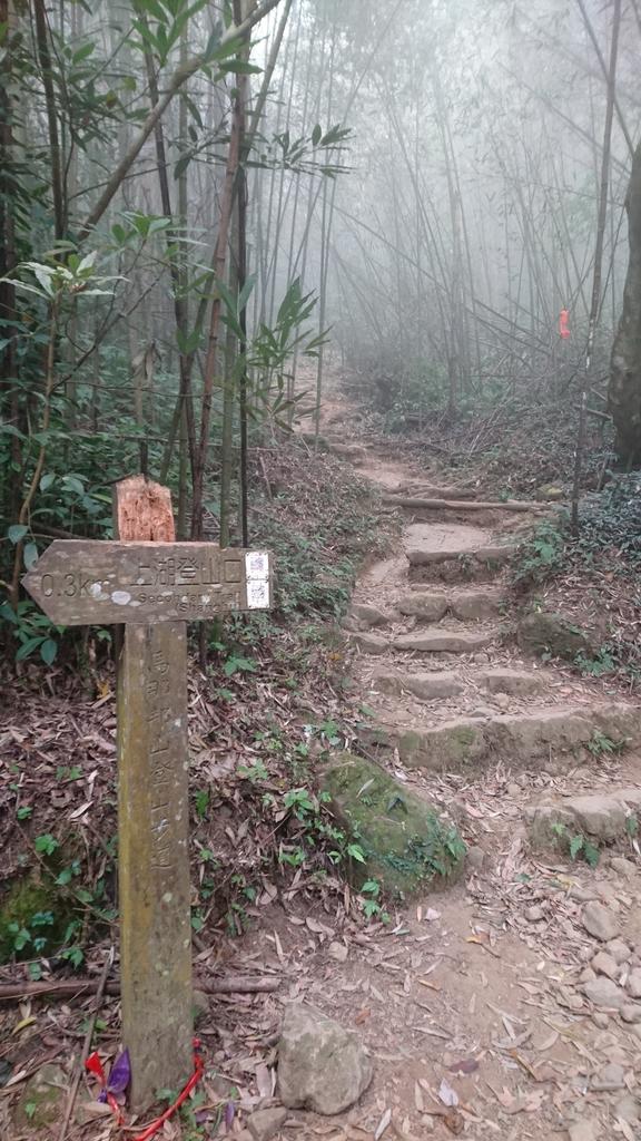 馬那邦山(錦雲山莊登山口):DSC_0686.JPG