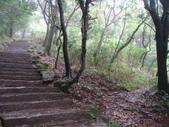 七星山的泥土步道100.11.29.~101.1.3.下午:DSC02028.JPG