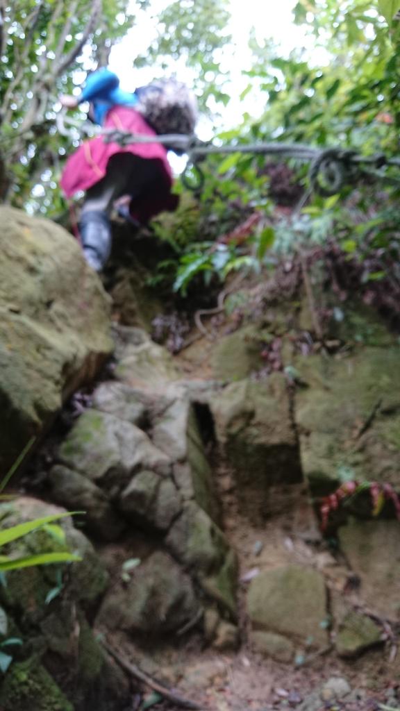 DSC_0467.JPG - 旅聯網十四周年版主登山活動