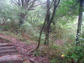 七星山的泥土步道100.11.29.~101.1.3.下午:DSC02029.JPG