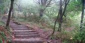 七星山的泥土步道100.11.29.~101.1.3.下午:DSC02029-30.JPG