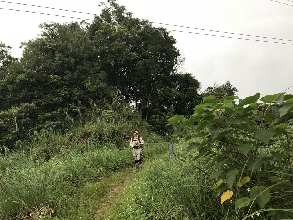IMG_5158.JPG - 旅聯網十四周年版主登山活動