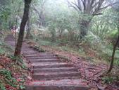 七星山的泥土步道100.11.29.~101.1.3.下午:DSC02030.JPG