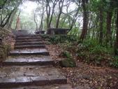 七星山的泥土步道100.11.29.~101.1.3.下午:DSC02031.JPG