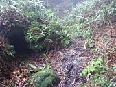 七星山的泥土步道100.11.29.~101.1.3.下午:DSC_0237.JPG