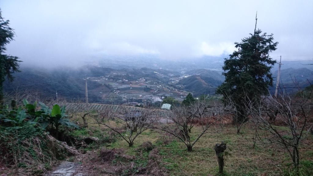 馬那邦山(錦雲山莊登山口):DSC_0689.JPG