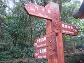 七星山的泥土步道100.11.29.~101.1.3.下午:DSC03189.JPG