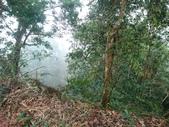 馬那邦山(錦雲山莊登山口):DSC_0477.JPG