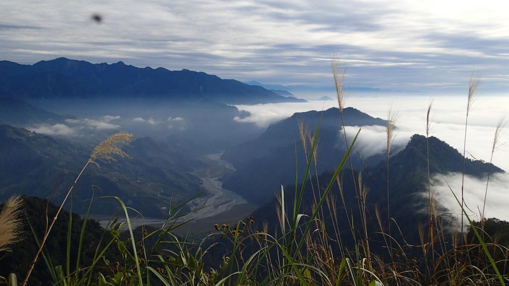 馬那邦山(錦雲山莊登山口):PC275742.JPG