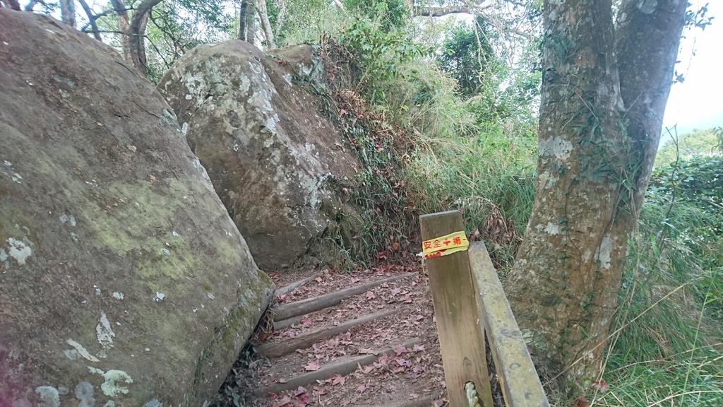 馬那邦山(錦雲山莊登山口):DSC_0560.JPG